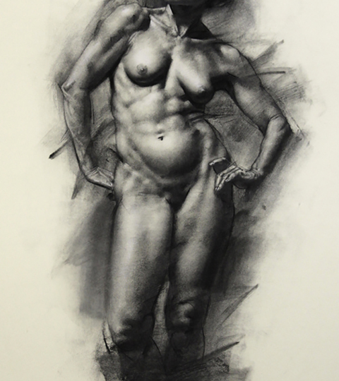 Charles Miano, Sevasti, charcoal on paper, 18x24